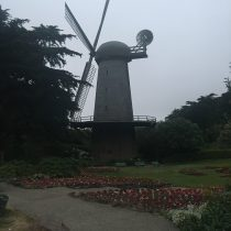 Dutch Windmill (wiatrak holenderski), Golden Gate Park