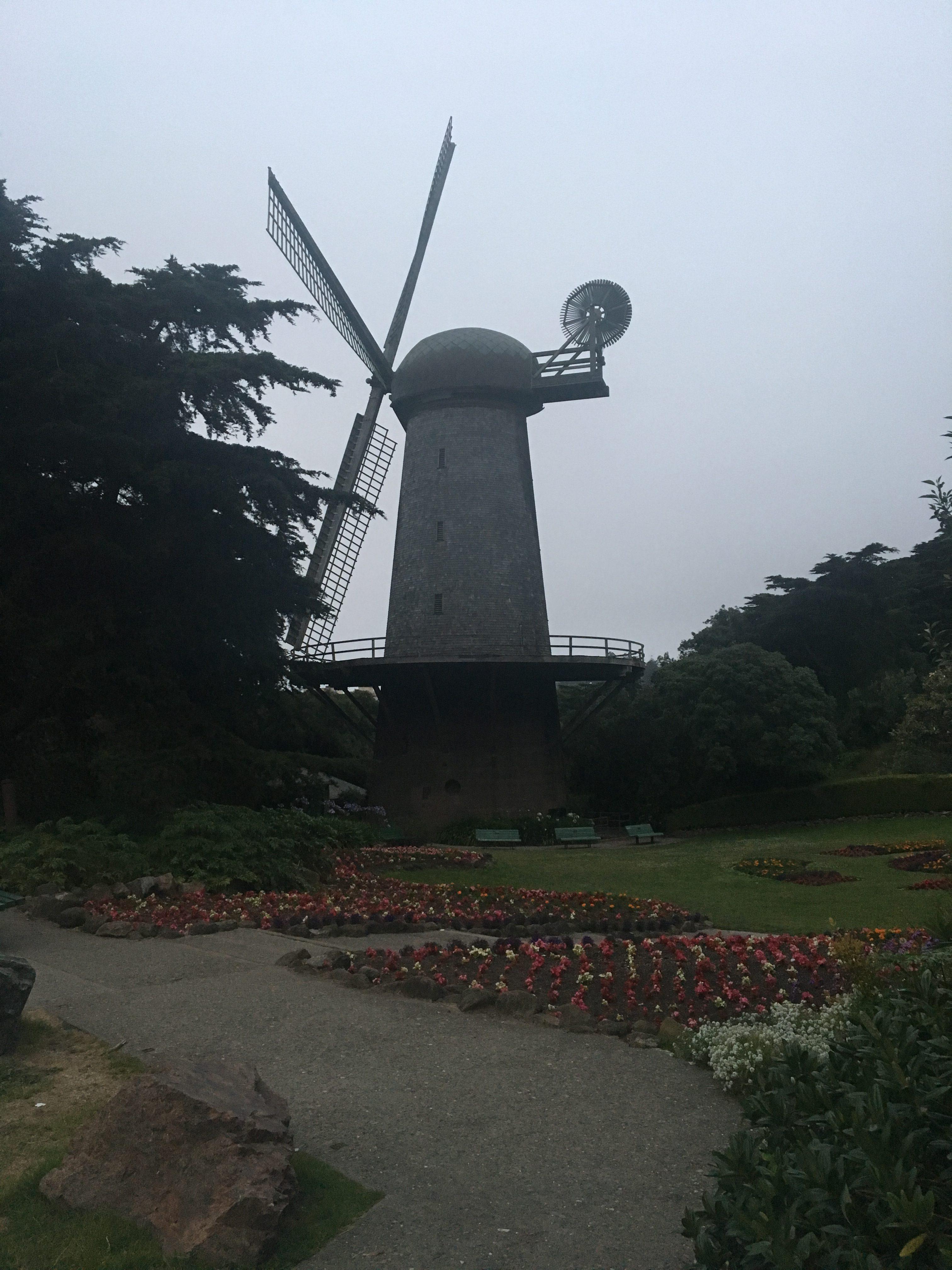 Dutch Windmill (wiatrak holenderski), Golden Gate Park