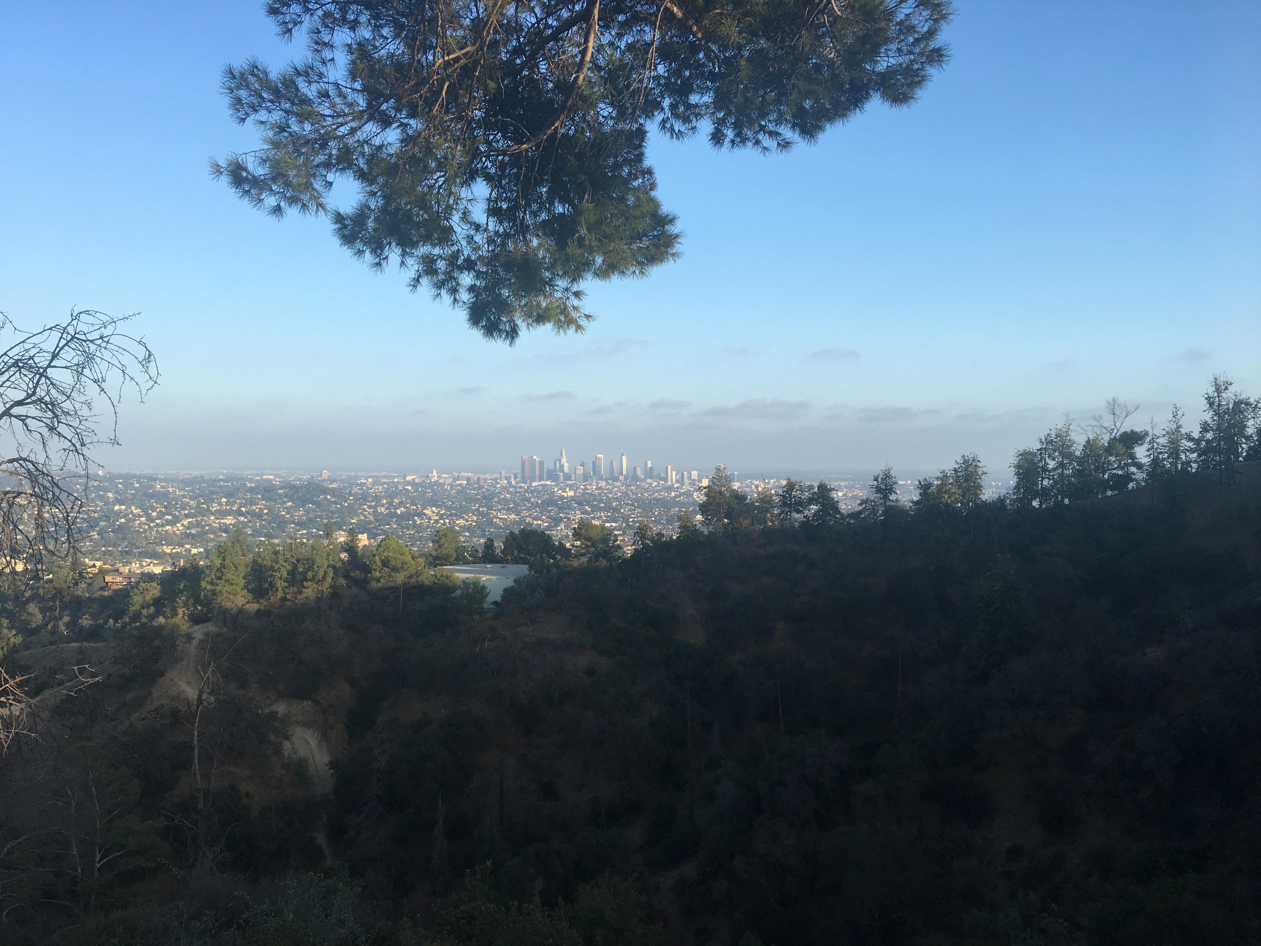 Los Angeles widziany z Griffith Observatory.