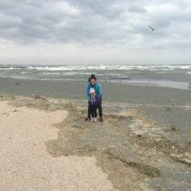 Mamaia - plaża. Takwieje, żenawet ptaki niechcą latać.